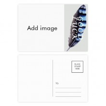 Lucky Feather Postcard Set Thanks Card Mailing Side 20pcs