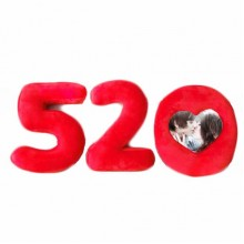 """520 I love you"" hold pillow (red)"