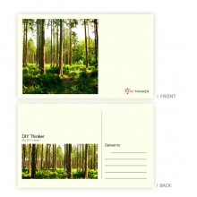 Concise postcard (pack of 20)