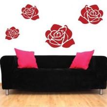 Blooming Rose Flower