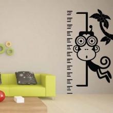 monkey Baby Ruler