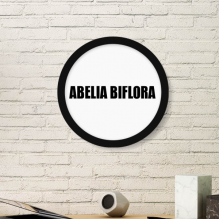 Abelia Biflora Flower Name Plant Art Painting Picture Photo Wooden Round Frame Home Wall Decor Gift