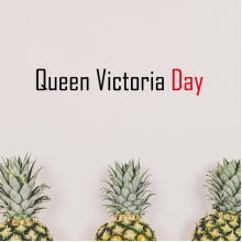 Celebrate Canada Queen Voctoria Day Blessing Festival Holiday Gala Celebration Words Removable Wall Sticker Art Decals Mural DIY Wallpaper for Room Decal