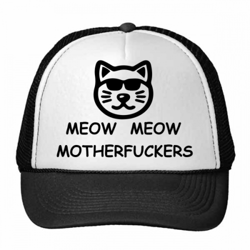 Animal Protector Pet Lover Pet Slave Comic Style Cartoon Mewing Mewing Pet Ownerss Pattern Trucker Hat Baseball Cap Nylon Mesh Hat Cool Children Hat Adjustable Cap