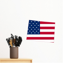 The United States Of America USA Colorado Map Stars And Stripes Flag Shape Removable Wall Sticker Art Decals Mural DIY Wallpaper for Room Decal