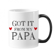 Got It From My Papa Children Father Present Morphing Heat Sensitive Changing Color Mug Cup Gift Milk Coffee With Handles 350 ml