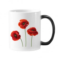Art Painting Corn Poppy Red Flowers Morphing Heat Sensitive Changing Color Mug Cup Gift Milk Coffee With Handles 350 ml