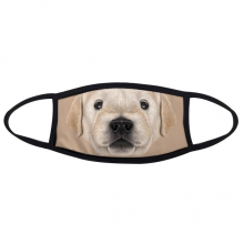 Trained Golden Retriever Puppy Dog Animal Face Anti-dust Mask Anti Cold Maske Gift