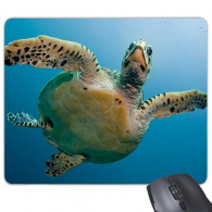Ocean Blue Water Turtle Science Nature Picture Rectangle Non-Slip Rubber Mousepad Game Mouse Pad Gift