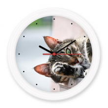 Animal Activity Cat Photograph Picture Silent Non-ticking Round Clock Battery-operated Home Wall Decal Gift