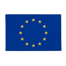 "EU National Flag Europe Country Anti-slip Floor Mat Carpet Bathroom Living Room Kitchen Door 16""x30""Gift"
