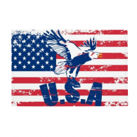 "America Flag Haliaeetus leucocephalus Eagle Anti-slip Floor Mat Carpet Bathroom Living Room Kitchen Door 16""x30""Gift"
