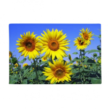 "Sunshine Flowers Sunflowers Blue Sky Anti-slip Floor Mat Carpet Bathroom Living Room Kitchen Door 16""x30""Gift"