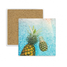 Pineapple Red Fruits Picture Blue Water Square Coaster Cup Mug Holder Absorbent Stone for Drinks 2pcs Gift