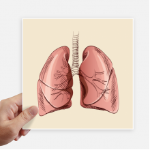 Organ Lung Human Illustration Sticker Tags Wall Picture Laptop Decal Self adhesive