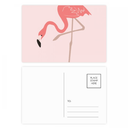 Standing Flamingo Pattern Postcard Set Birthday Thanks Card Mailing Side 20pcs