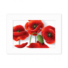 Red Flowers Painting Corn Poppy Petals Fruit Desktop Photo Frame White Picture Art Painting 5x7 inch
