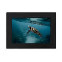 Ocean Sea Turtle Science Nature Picture Desktop Photo Frame Black Picture Art Painting 5x7 inch