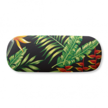 Tropical Leaf Drawing Art Plant Glasses Case Eyeglasses Hard Shell Storage Spectacle Box