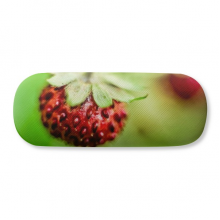 Fresh Berry Picture Nature Photograph Glasses Case Eyeglasses Hard Shell Storage Spectacle Box