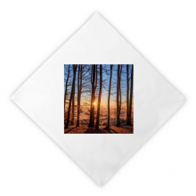 Dark Forestry Science Nature Scenery Dinner Napkins Lunch White Reusable Cloth 2pcs