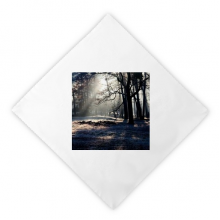Green Forestry Science Nature Scenery Dinner Napkins Lunch White Reusable Cloth 2pcs