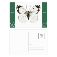 Butterfly with White Dark Wings Good Luck Postcard Set Card Mailing Side 20pcs