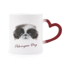 Black and white Cute Pekingese Dog Pet Animal Morphing Mug Heat Sensitive Red Heart Cup