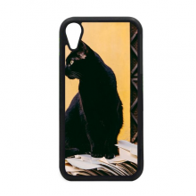 Animal Cool Black Cat Photograph iPhone XR iPhonecase Cover Apple Phone Case