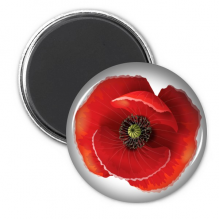 Red Flower Painting Big Corn Poppy Circle Refrigerator Magnet Badge 3pcs