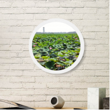 A Lotus Pond Round White Wall Picture Frame Wooden Home Decor